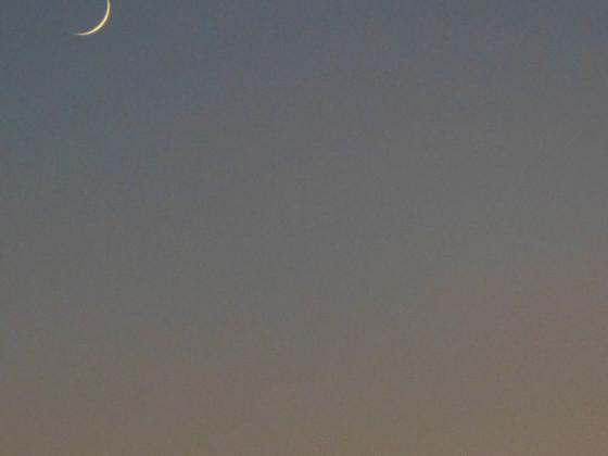 Die Mondsichel bei der Venus.