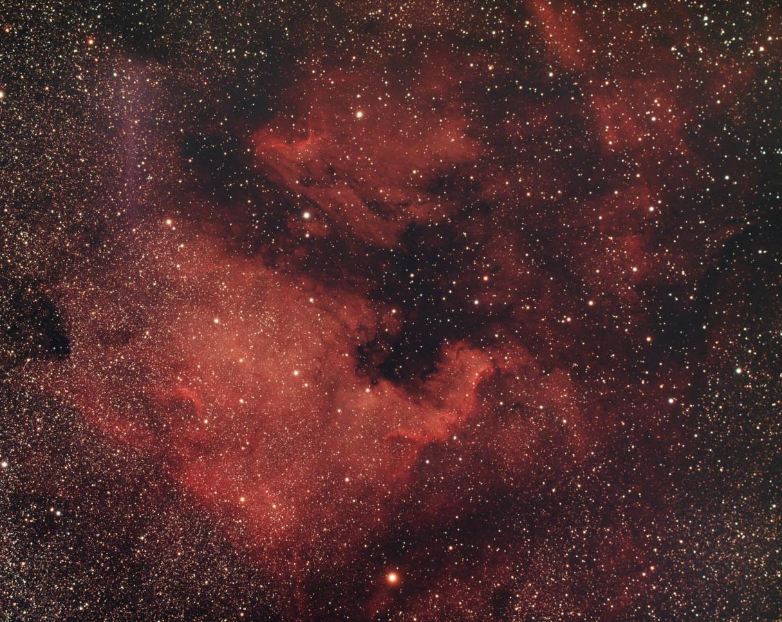 Nordamerikanebel NGC  7000 + Pelikannebel IC 5070 über Dresden