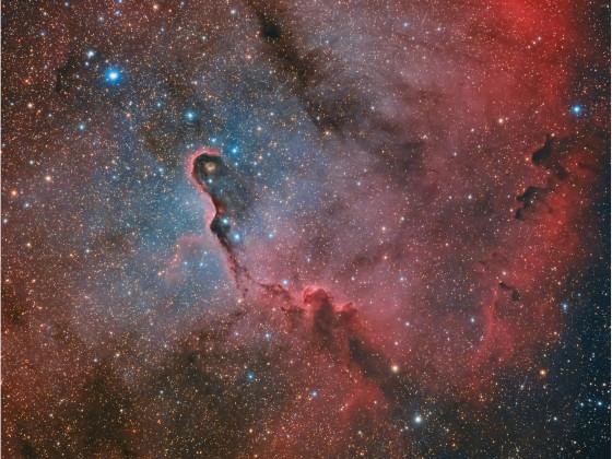 IC1396 Elefant trunc