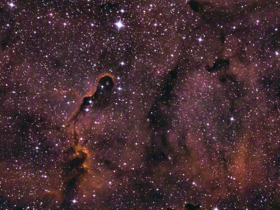 IC 1396 Elefanenrüsselnebel