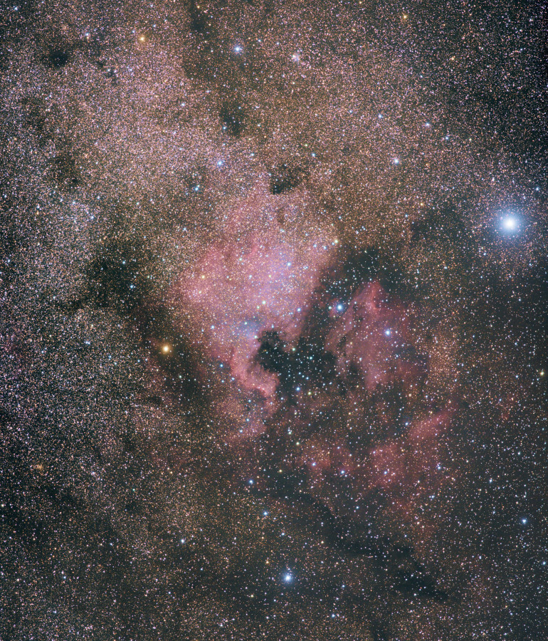 Nordamerika- und Pelikannebel sowie Sternhaufen und weitere Nebel