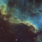 Nordamerikanebel NGC7000 (Detail)