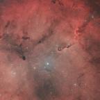 IC 1396 und die darin liegenden Dunkelnebelglobulen