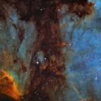 IC 5067 / LDN 935 Emissions- und Dunkelnebel in Cygnus
