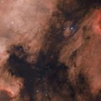 NGC 7000 und IC 5070