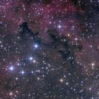 Barnard 344