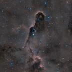 IC1396  der Elefantenrüssel (HaRGB)
