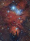 NGC 2264 + Konusnebel - 2019 + 2016 von hobbyknipser